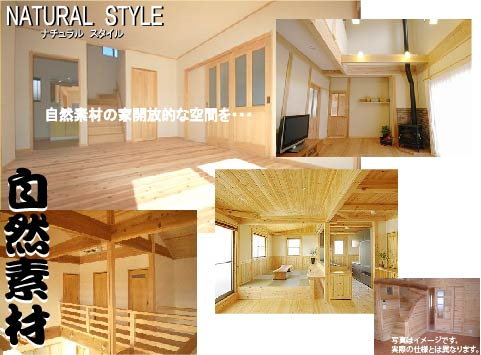 natural_style